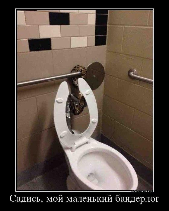 Настоящего героя ремонт в туалете своими руками фото туалет маленький занимается тем