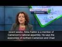 The Economics Report Boko Haram Weakens Chad, Cameroon Economies
