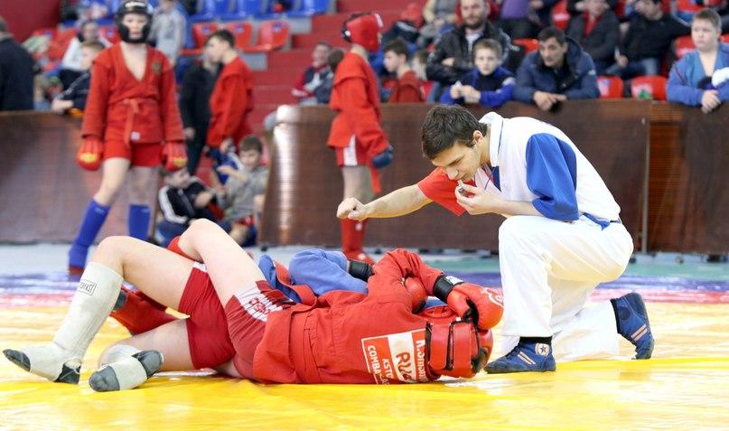 Открытый турнир по самбо пройдет в Нижнем Новгороде