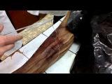 Топографическая анатомия (узлы) хирург- The Omniscient