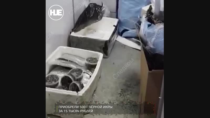 В Казани задержали продавцов черной икры