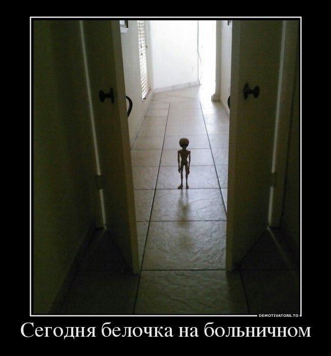 Все бигль фото щенки цена в москве удерживается желания потянуться