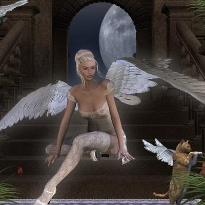 Angel Angel, 1 июля , Нижнекамск, id216057159