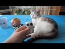 [А ну-ка Давай-ка] ПИТОМЦЫ ЛОЛ! КУКЛЫ КОТ МАЛЫШ И КОШЕЧКА МУРКА! LOL SURPRISE PETS и 3D РУЧКА! ИГРУШКИ СВОИМИ РУКАМИ