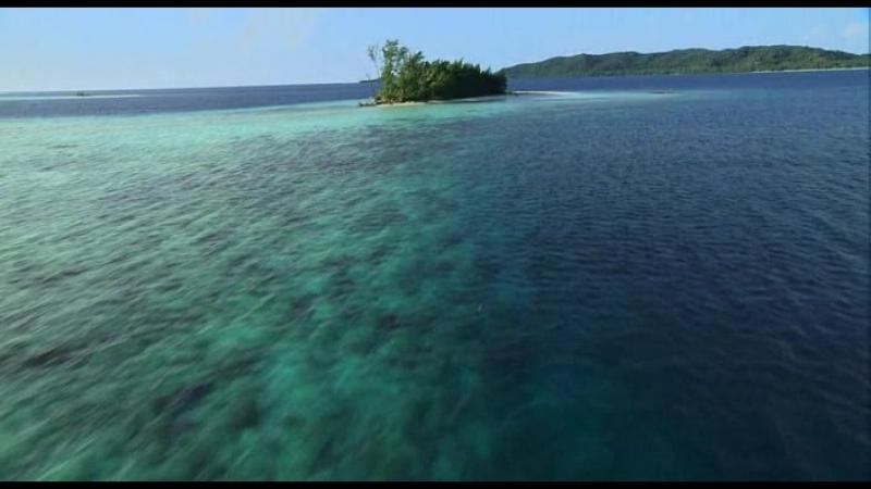 Тайны Тихого Океана - 5 часть