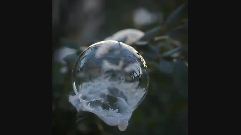 Пузырь на морозе
