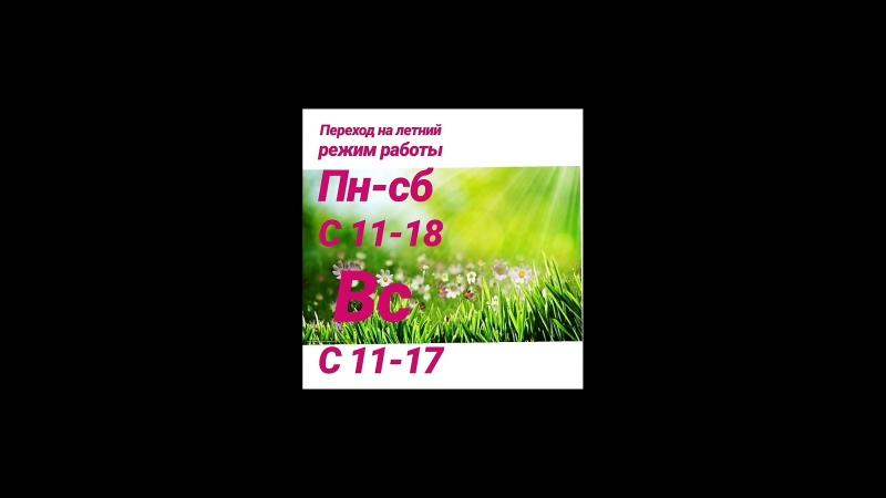 VID_41751114_050846_533.mp4