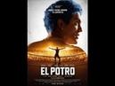 Descargar El Potro: Lo mejor del amor (2018) 720p Latino Mega
