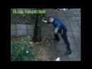 алкоголик держит дерево гравитация