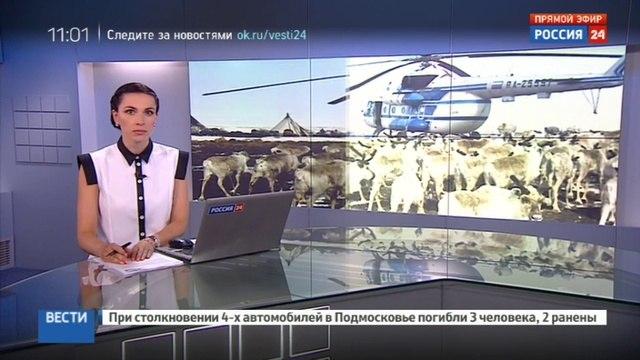 Новости на Россия 24 • Глава Роспотребнадзора сообщила о локализации сибирской язвы на Ямале