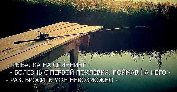 https://pp.userapi.com/c846124/v846124627/10b47d/Bgvpgrz7Kdk.jpg