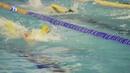В Новом Уренгое прошли соревнования по плаванию посвященные Дню рождения Общества