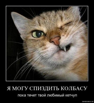 Королев Толян, 2 июля 1999, Красноярск, id224897819