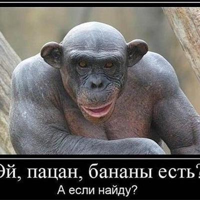 Обидин Ахмедов, 9 июля 1999, Щелково, id213377779