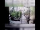 Задержана экс-спутница избитого депутата ЛДПР Сергея Жигарева