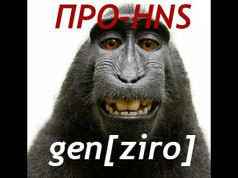 GENZIRO про hns movie
