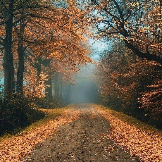 очутиться в раю - Страница 2 KGcp8am-kIU