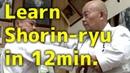 Learn Shorin-ryu in 12min. | Minoru Higa's practice 3 | 比嘉稔先生 | 小林流究道館