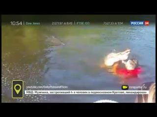 Американец нырнул в пруд к аллигатору, чтобы поиграть.