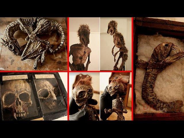ТАКОГО ВЫ НЕ ВИДЕЛИ Самая загадочная Коллекция таинственных криптидов Томаса Мерлина ЖУТЬ . 👹
