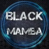 Black Mamba - АвтоЗвук  Бийск 