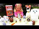 ✿ Игровой ДОМИК Тайная Жизнь Дом Животных The Secret Life of Pets Toy House for Kids Videos