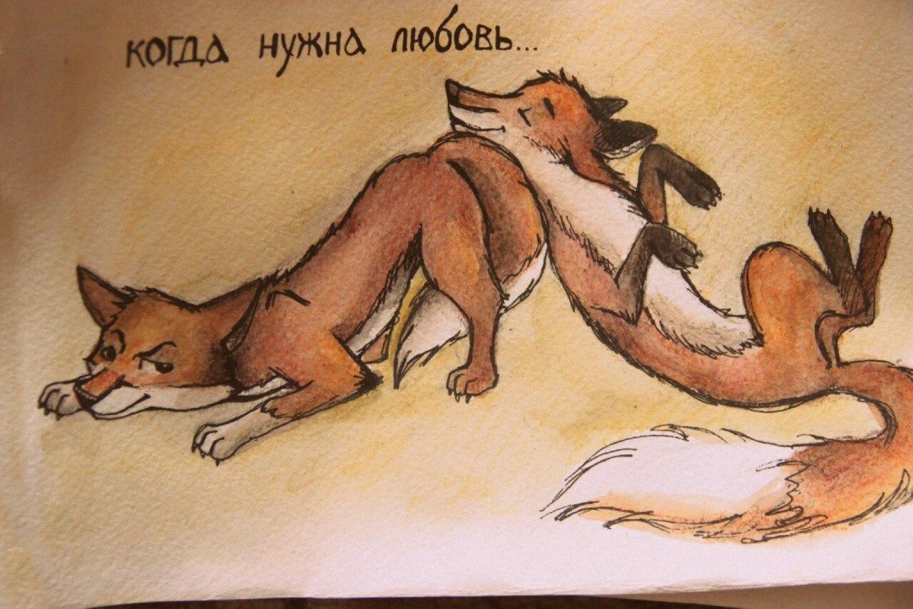 Прикольные картинки про лису и мужиков, открытки марта смешные