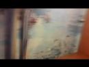 Владимир Широков - Live