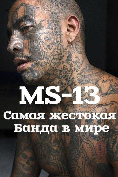 MS-13: Самая жестокая банда в мире (2013)