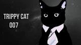 TRIPPY CAT AGENT 007 MINIMAL TECHNO ELECTRO HOUSE MIX DECEMBER