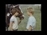Мы ведь не хромые утки Wir sind doch keine lahmen Enten (1988, ГДР)