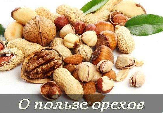 продукты которые улучшают потенцию