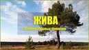 Жива селение Родовых поместий на Урале