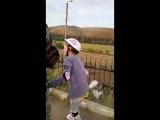Саша,конь и ролики