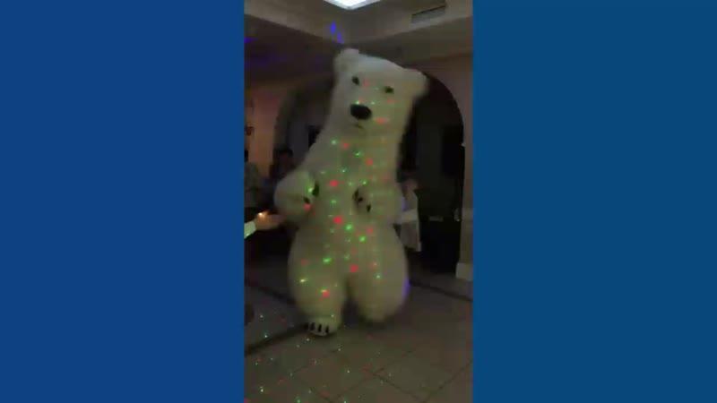 Гигантский медведь на свадьбу и другой праздник. Ирина Ларина. Ведущая Орехово-Зуево