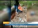 После избиения школьницы в Красноярске её обидчиками занялись органы