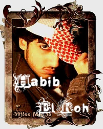 Habib ELroh, 24 марта 1991, Архангельск, id225603587