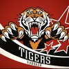 "Tigers.in.ua - ХК ""Харьковские Тигры"""