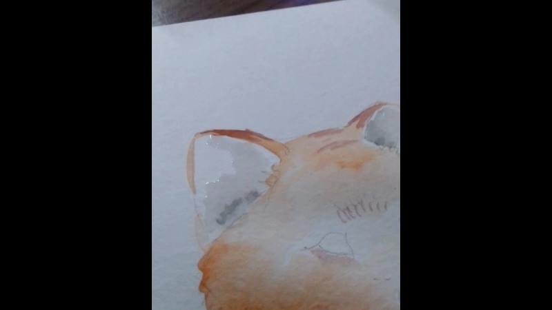 лисенок акварель