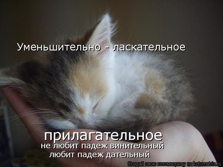 http://cs405316.userapi.com/v405316196/5952/psj14bqi4VM.jpg
