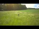 Sarah Longfield 'Stay Here' Full HD