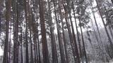 ДЕПРЕССИЯ НАЧИНАЕТСЯ С ЕРУНДЫ-2 (Ermakova-kaif)