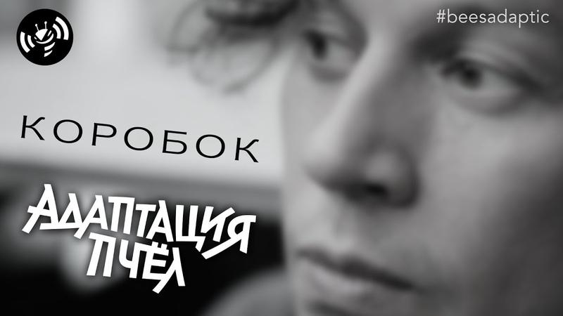 Адаптация Пчёл - Коробок (в главной роли Александр Буслов)