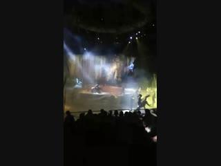 Цирк дю Солей. Аватар. Италия