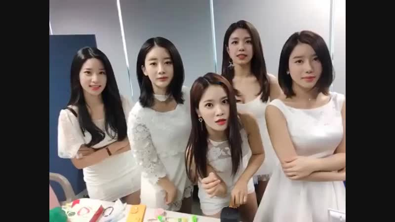 Berrygood_official_44203505_1160821714056105_8604002370830991360_n