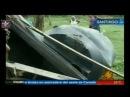 Pareja de Haitianos Muere aplastado por tinaco en Licey