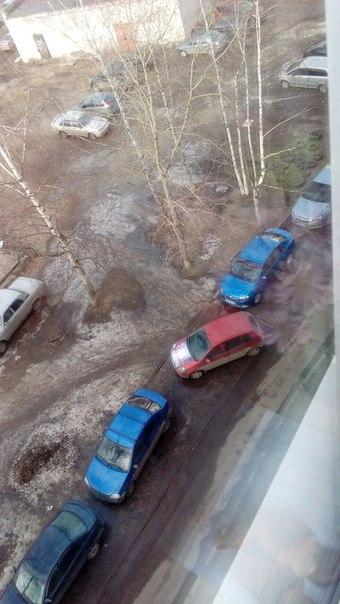 Паркуюсь как хочу.....