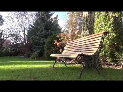 Carla Bruni - Perfect Day