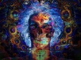 Goa Psychedelic Trance - Perfect Trip 2016
