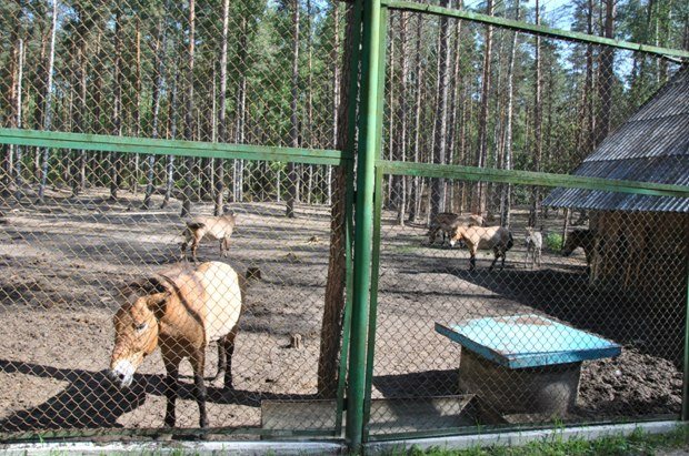 Хотынецкий природный парк, Орловская области